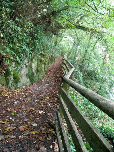 The Crooked Walkway