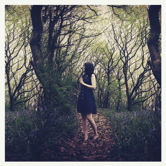 A Dream Perhaps by Melissa Nucera