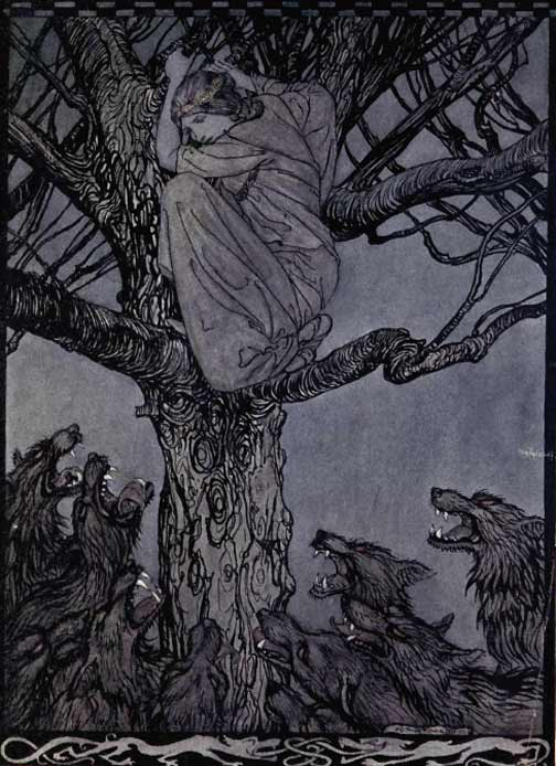 The Story of Tuan Mac Cairill by Arthur Rackham