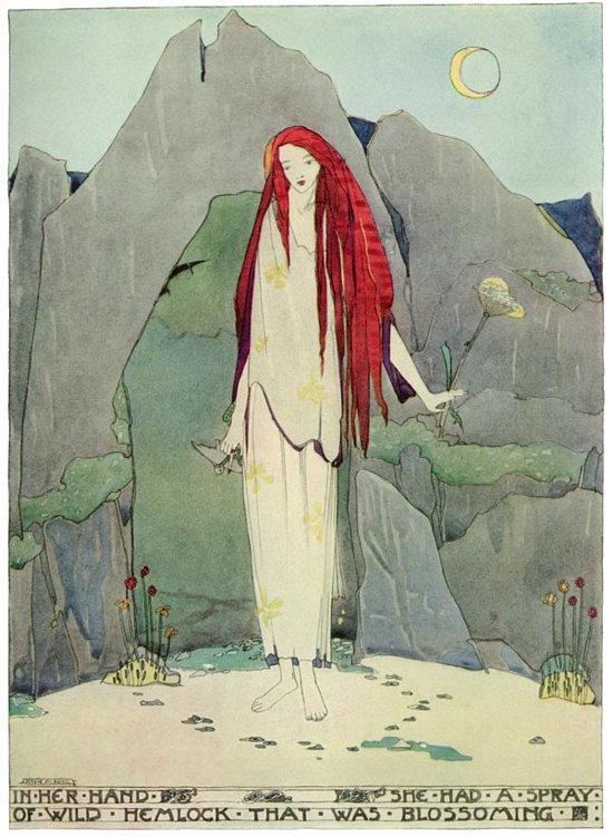 Wild Hemlock by Jessie Marion King