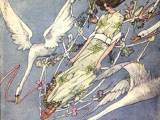 The Wild Swans by Harry Clarke