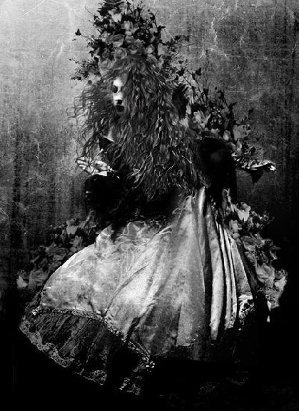 Wild Girl by Jan Walsh