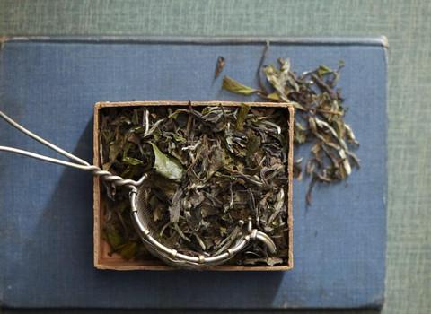 White Peony Loose Leaf Tea