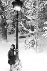 The Magic of Snow Storms and Narnia